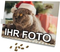printplanet – Katzen Adventskalender